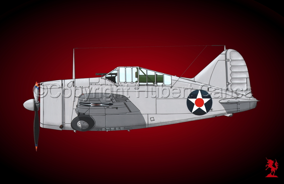 """Brewster F2A-1 """"Buffalo"""" #2.4 (large view)"""