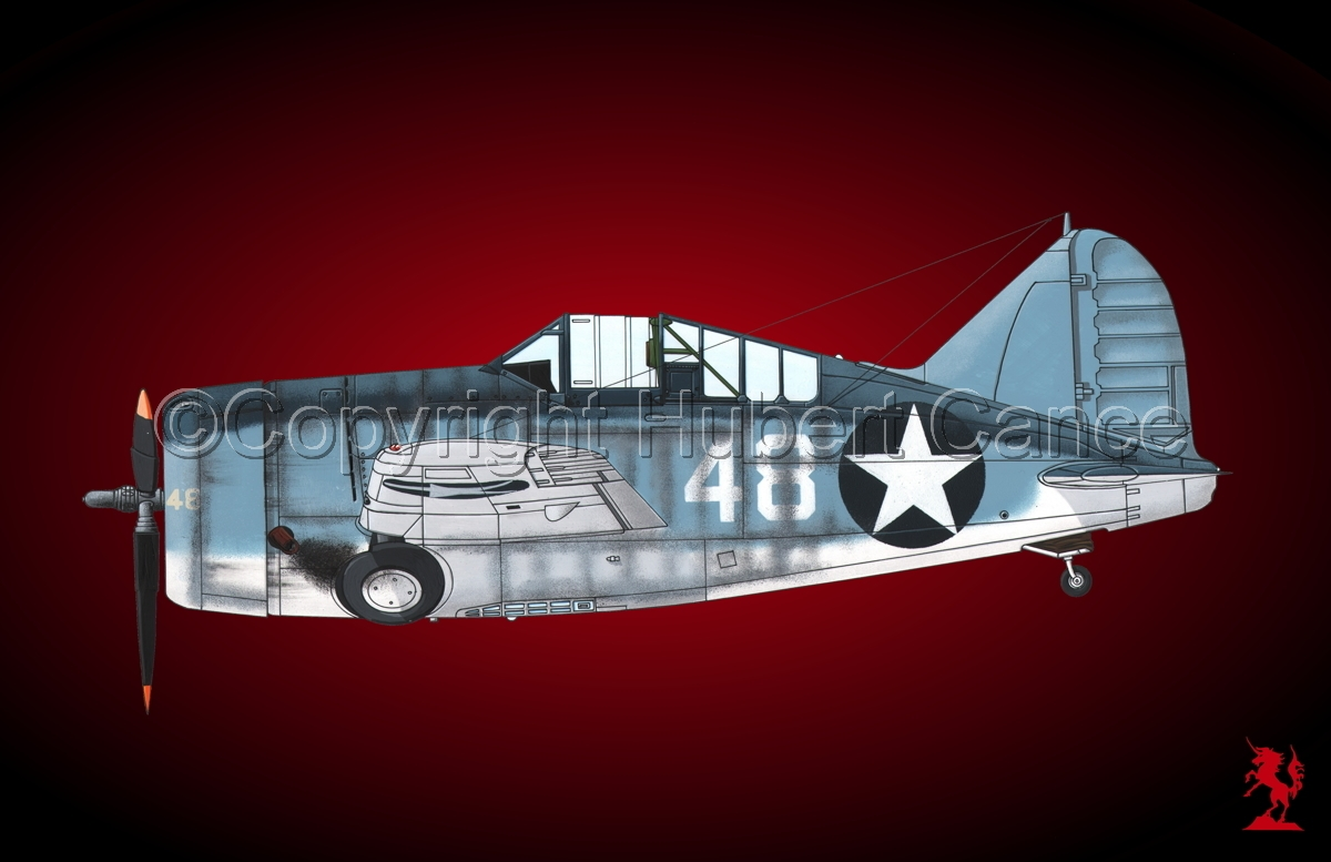 "Brewster F2A-3 ""Buffalo"" #3.4 (large view)"