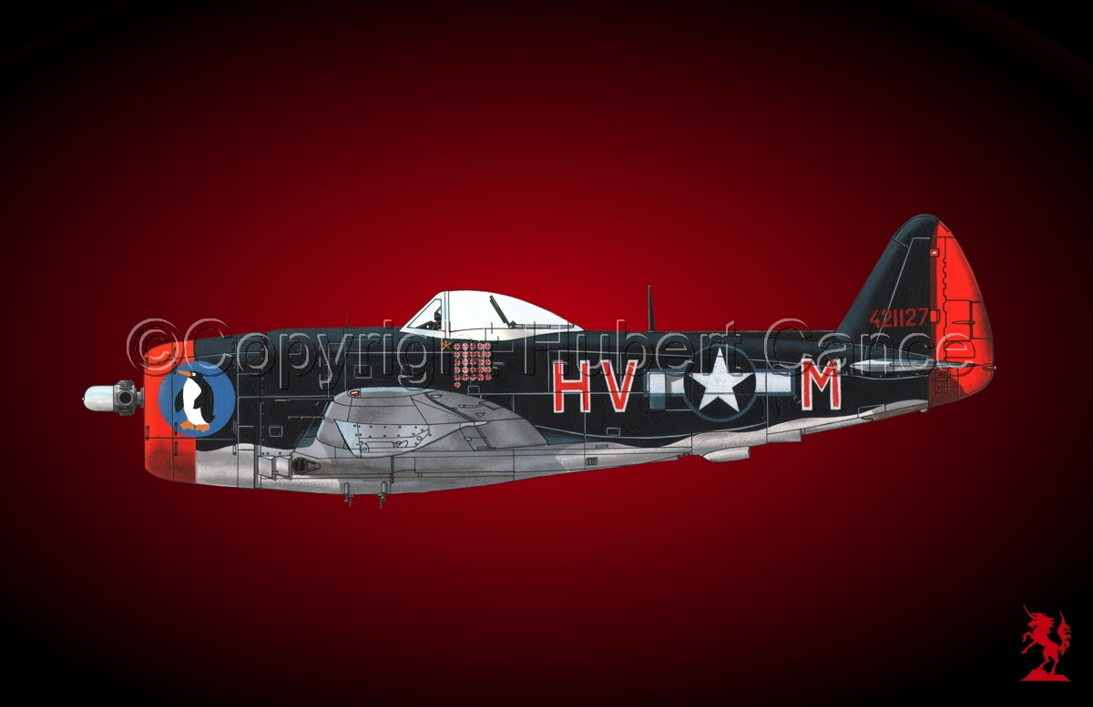 "Republic P-47D-30 ""Thunderbolt"" #1.4 (large view)"