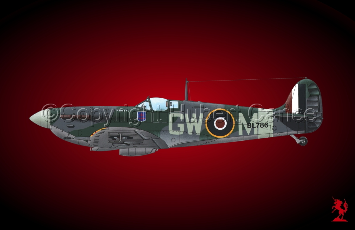 "Supermarine ""Spitfire"" Mk.Vb #1bis.4 (large view)"