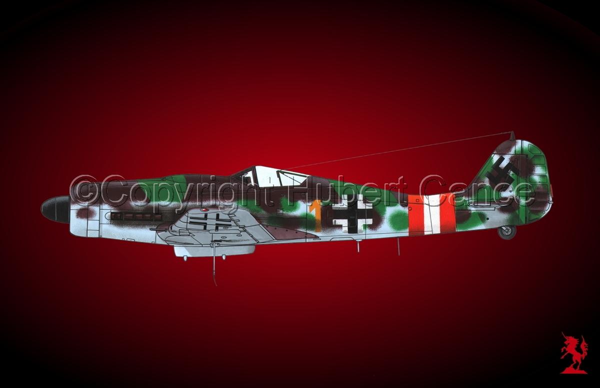 "Focke-Wulf Fw 190D-9 ""Dora""#1.4 (large view)"