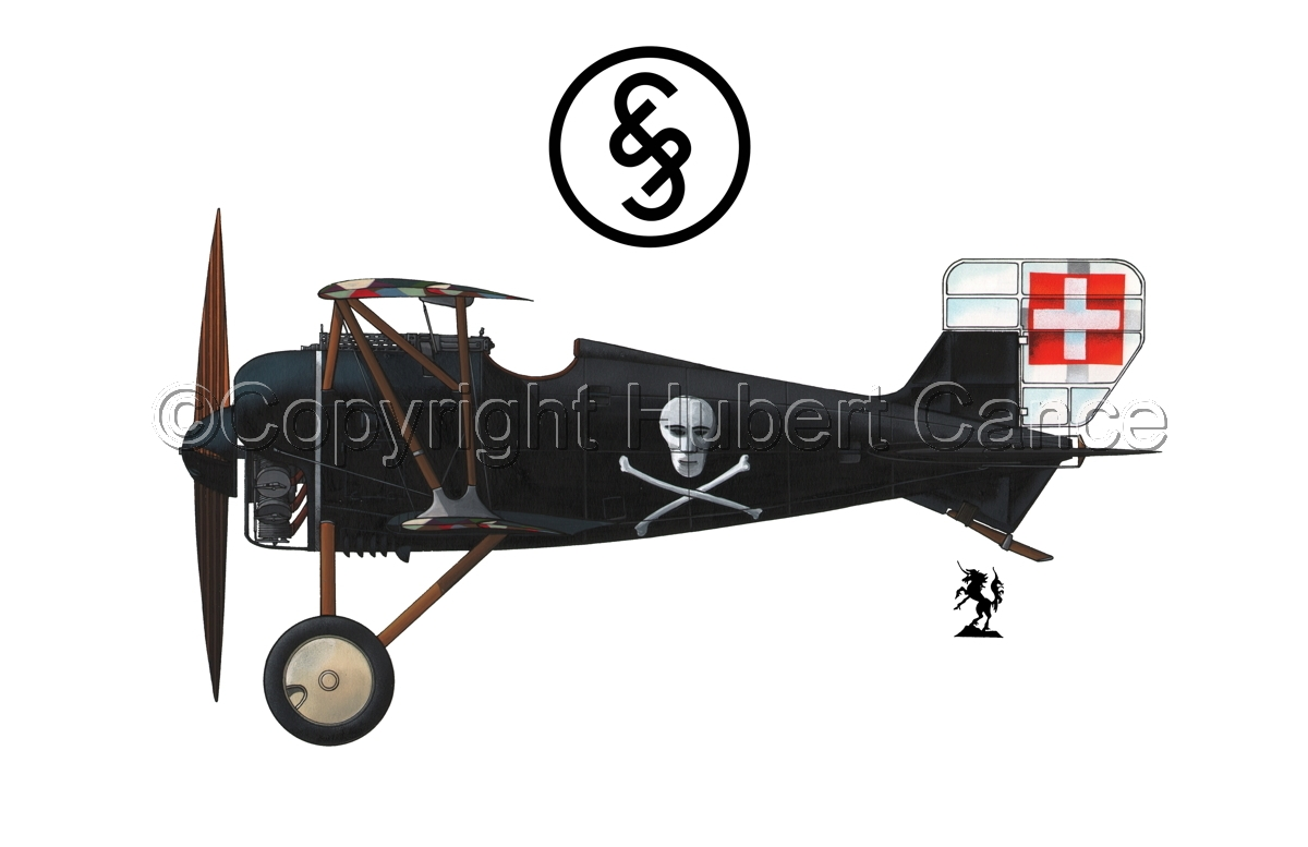 Siemens-Schuckert D.III (Logo #1.1) (large view)