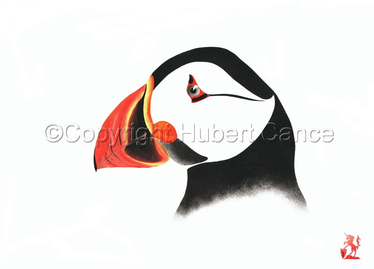"""Atlantic Puffin"" (large view)"