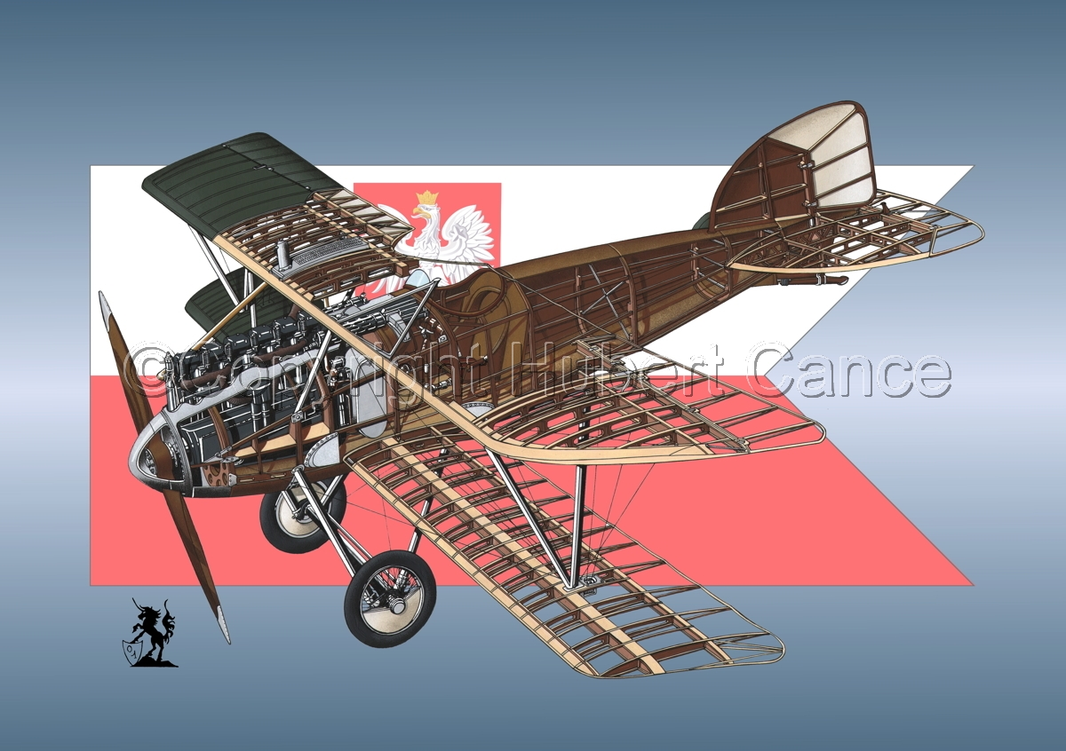 Albatros D.III (Insignia #3) (large view)