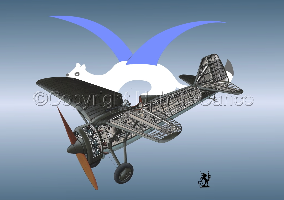 PZL P.7a (Insignia #21) (large view)