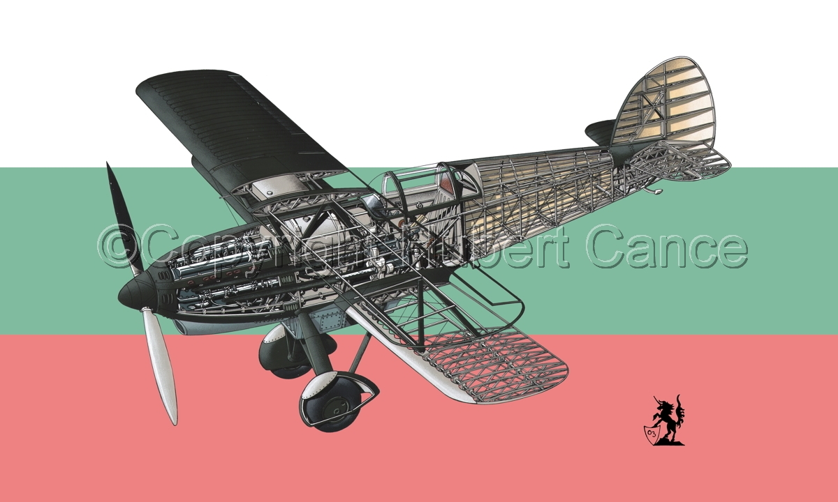 Avia B-534N (Flag #4) (large view)