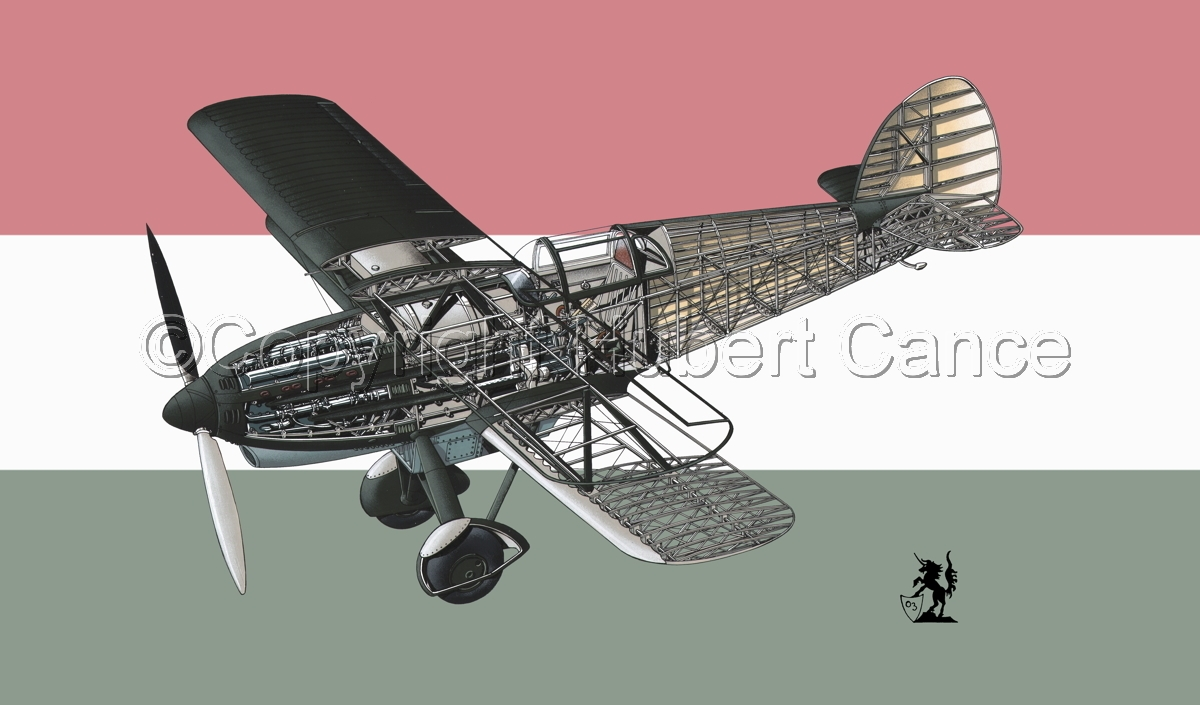 Avia B-534N (Flag #9) (large view)