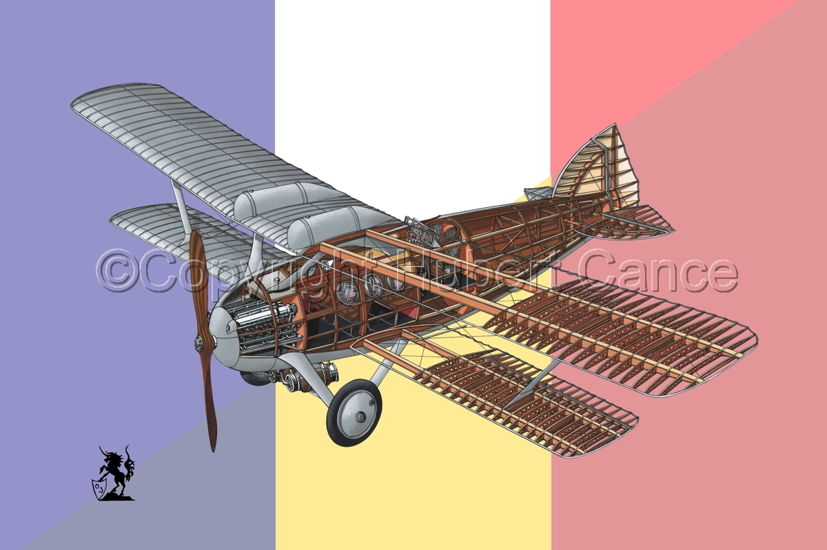 Bleriot-SPAD S.46 (Flag #3) (large view)
