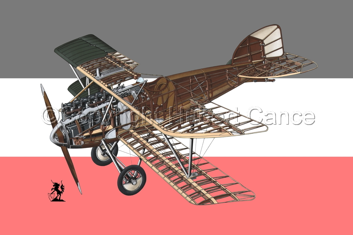Albatros D.III (Flag #1) (large view)