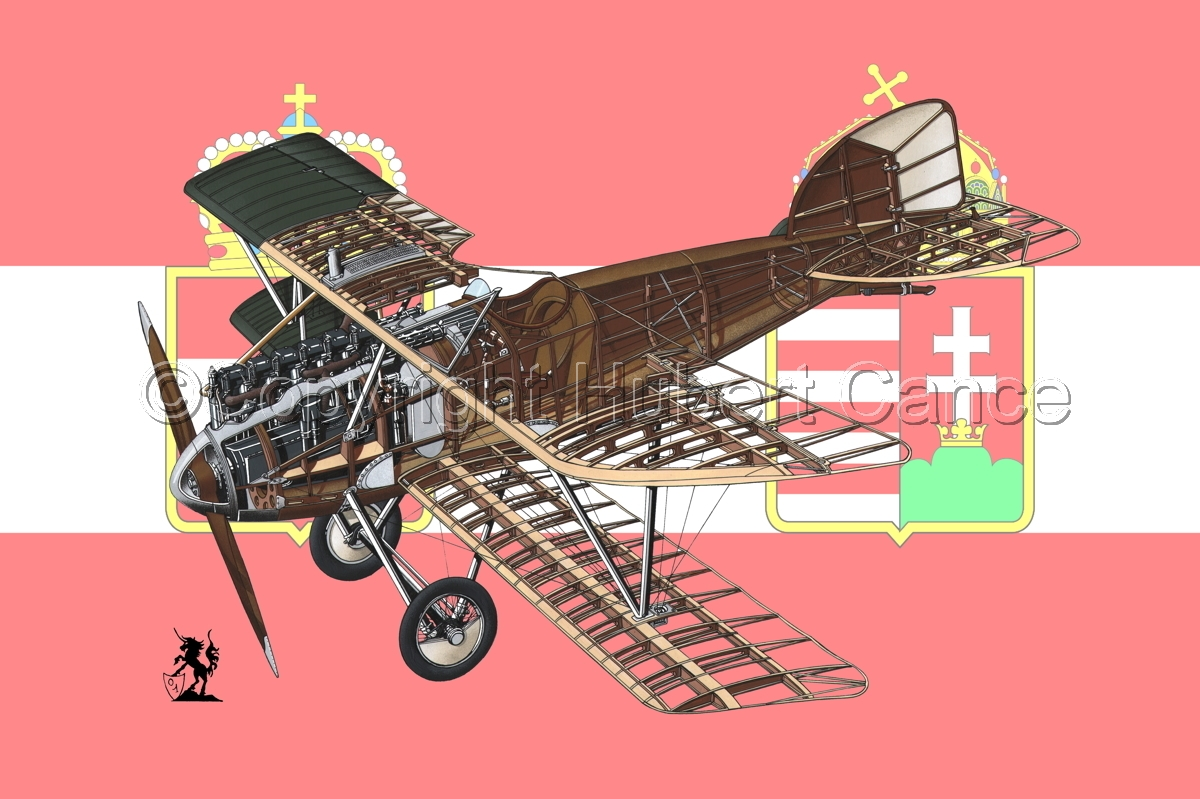 Albatros D.III (Flag #4) (large view)