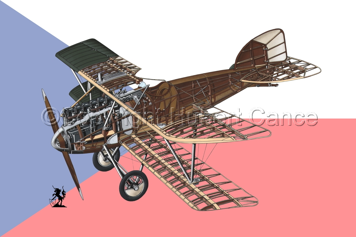 Albatros D.III (Flag #10) (large view)