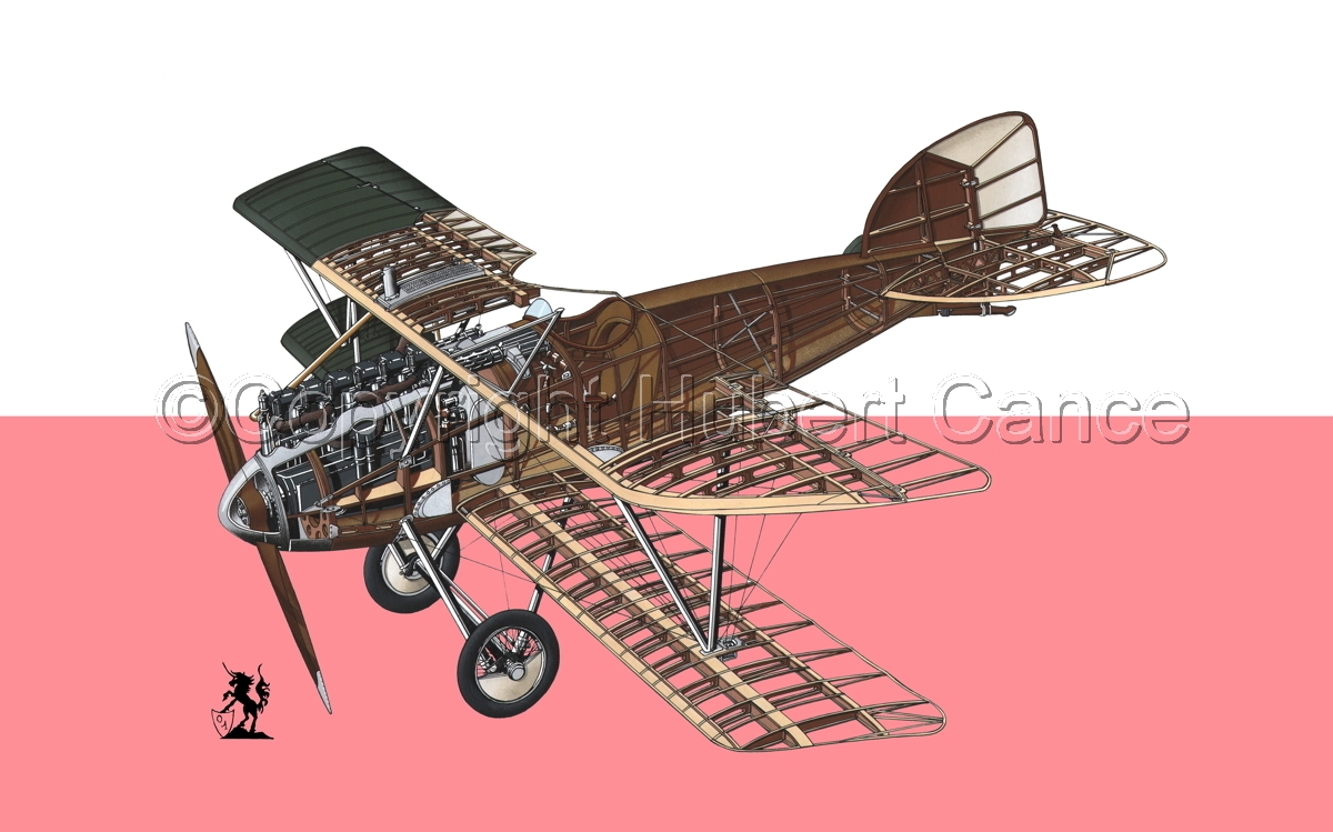 Albatros D.III (Flag #12) (large view)
