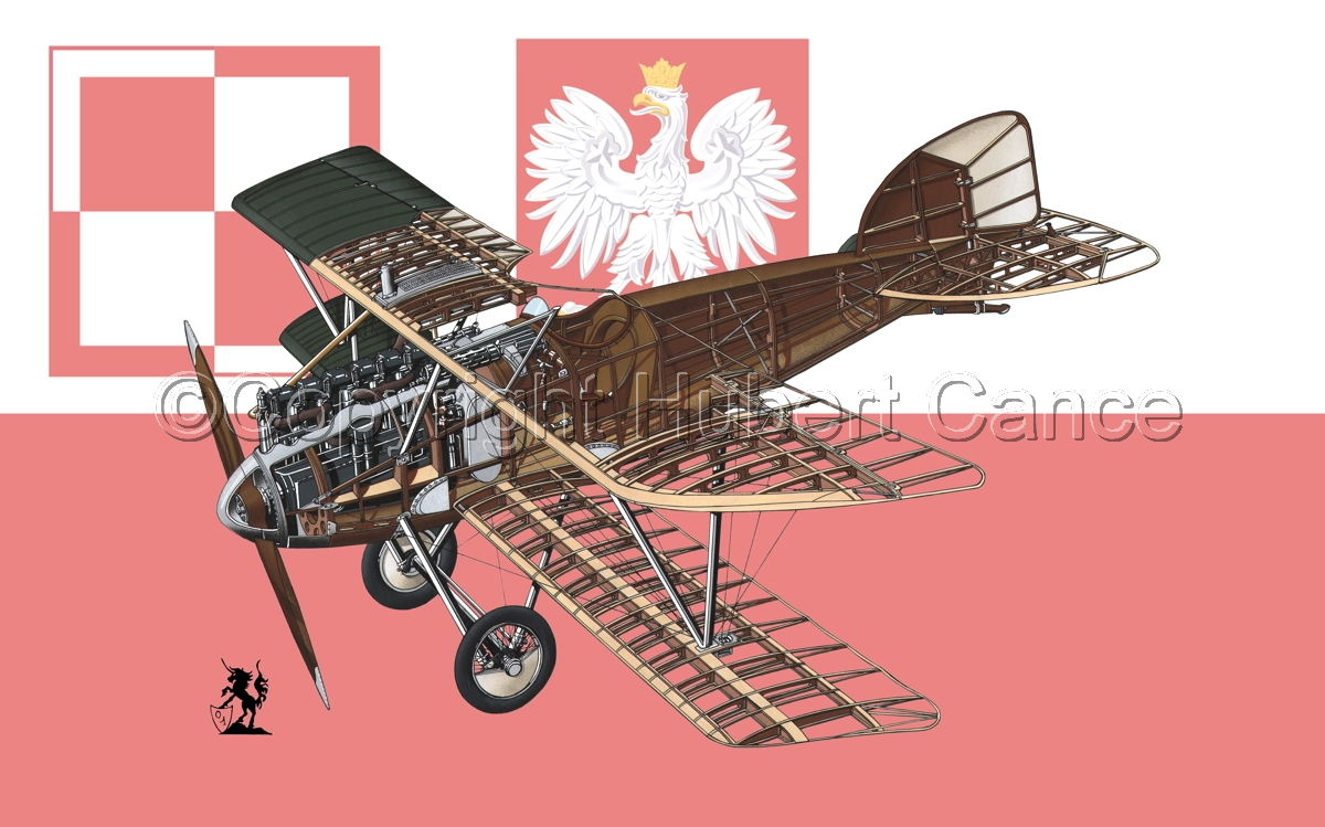 Albatros D.III (Flag #13) (large view)