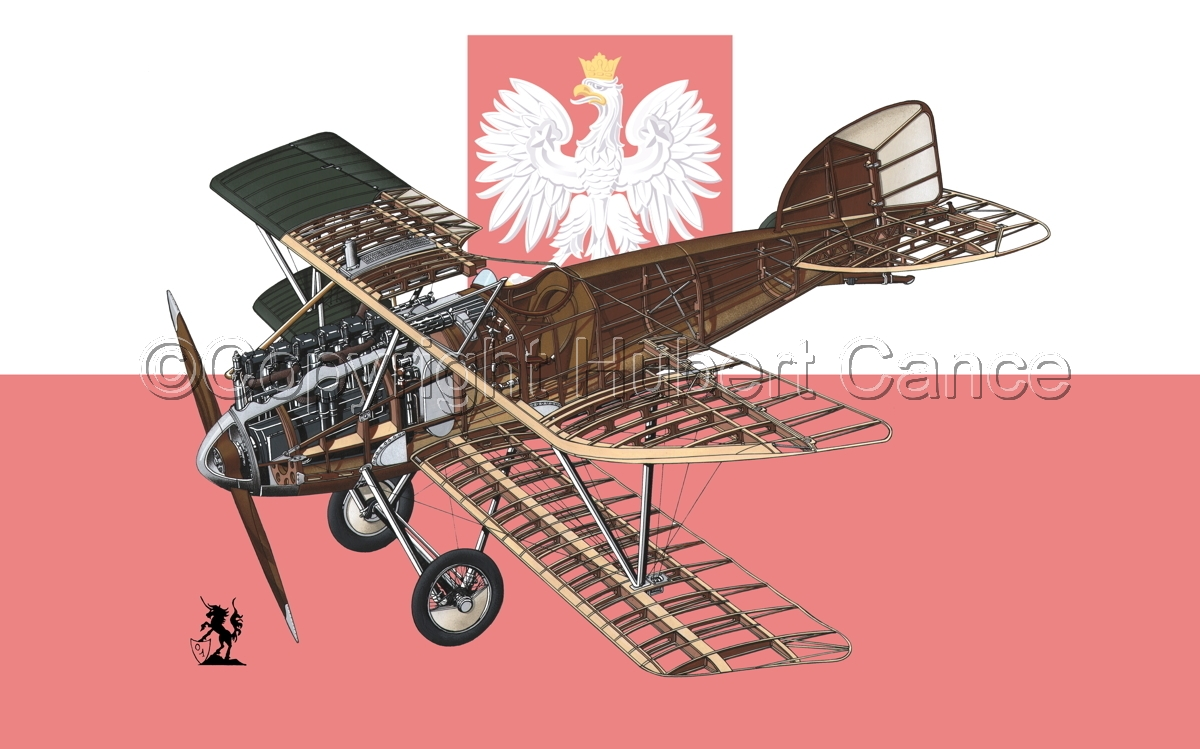 Albatros D.III (Flag #14) (large view)