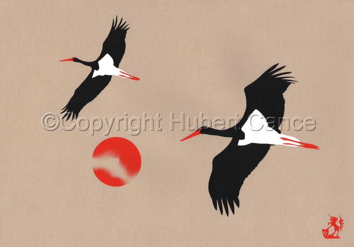 Flying Black Storks (large view)