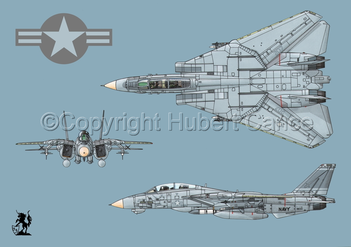 "Grumman F-14A ""Tomcat"" #2 (Roundel #1.2) (large view)"