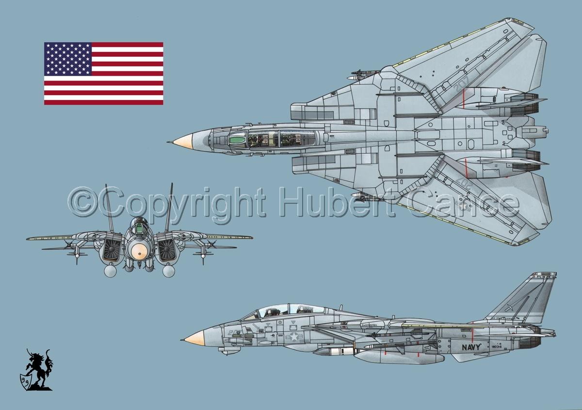 "Grumman F-14A ""Tomcat"" #2 (Flag #1.2) (large view)"