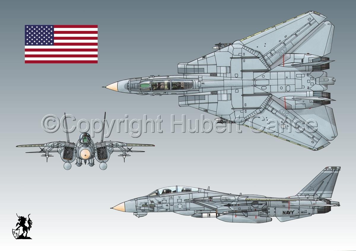 "Grumman F-14A ""Tomcat"" #2 (Flag #1.3) (large view)"