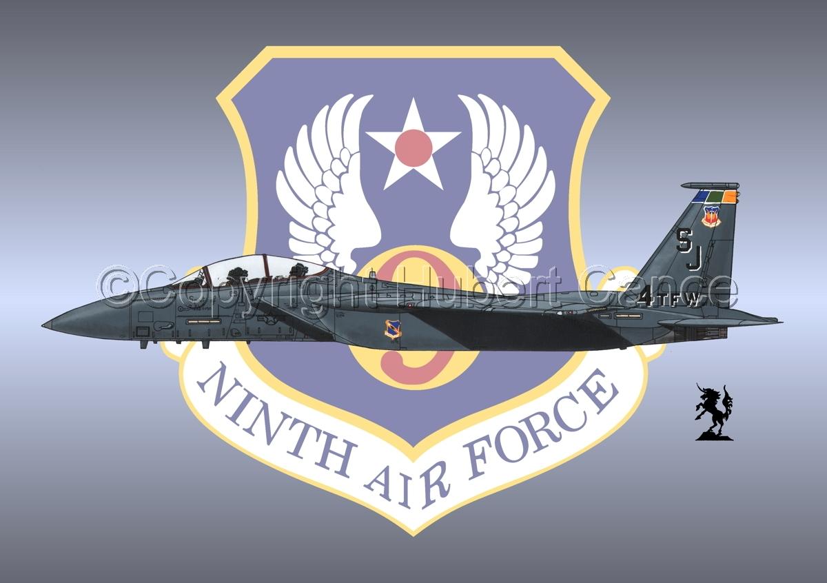 "McDD F-15E ""Strike Eagle"" (Insignia #11) (large view)"