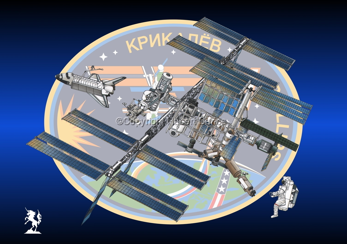 International Space Station (Insignia #14) (large view)