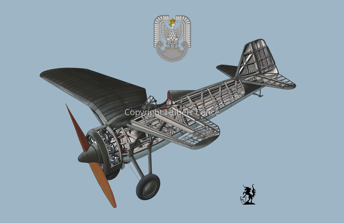 PZL P.7a (Insignia #1.2) (large view)