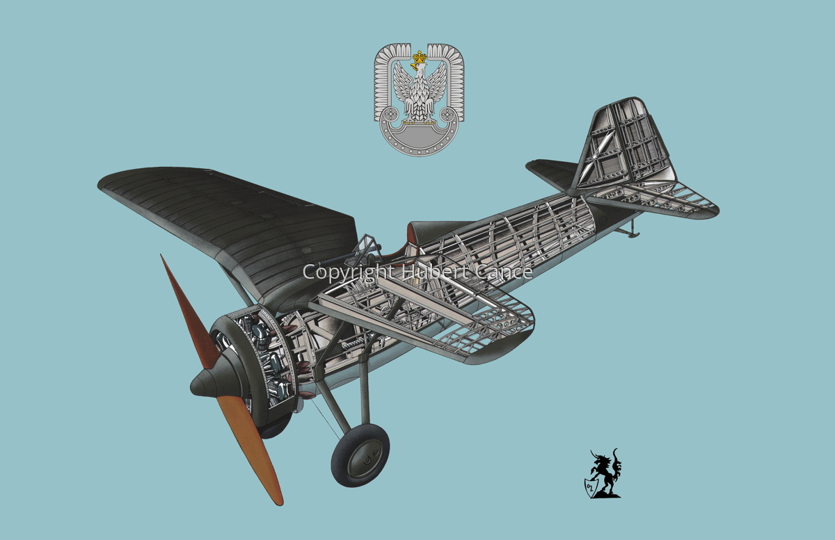PZL P.7a (Insignia #2.2) (large view)