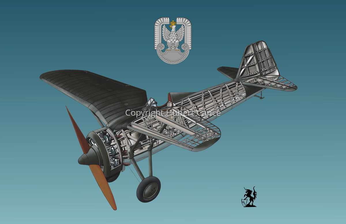 PZL P.7a (Insignia #2.3) (large view)
