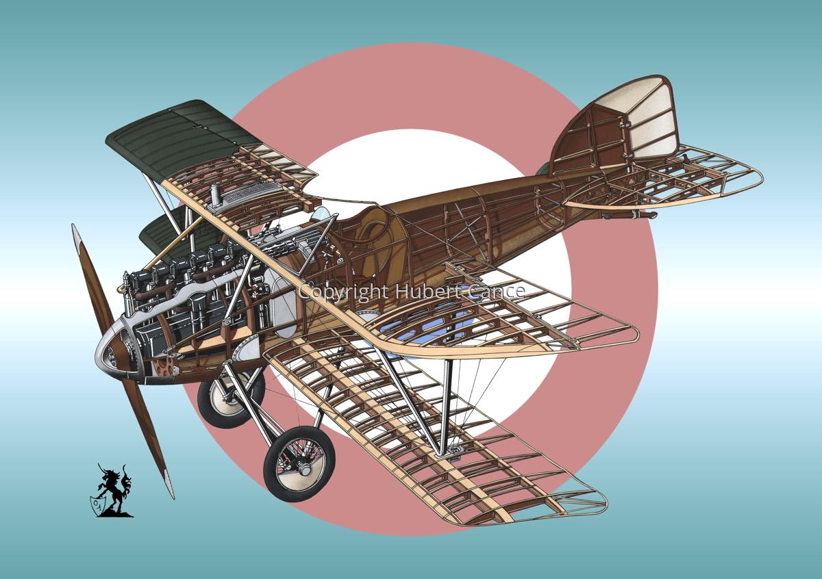 Albatros D.III (Roundel #3) (large view)