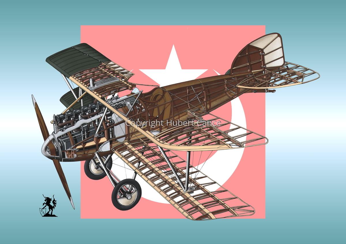 Albatros D.III (Roundel #5) (large view)