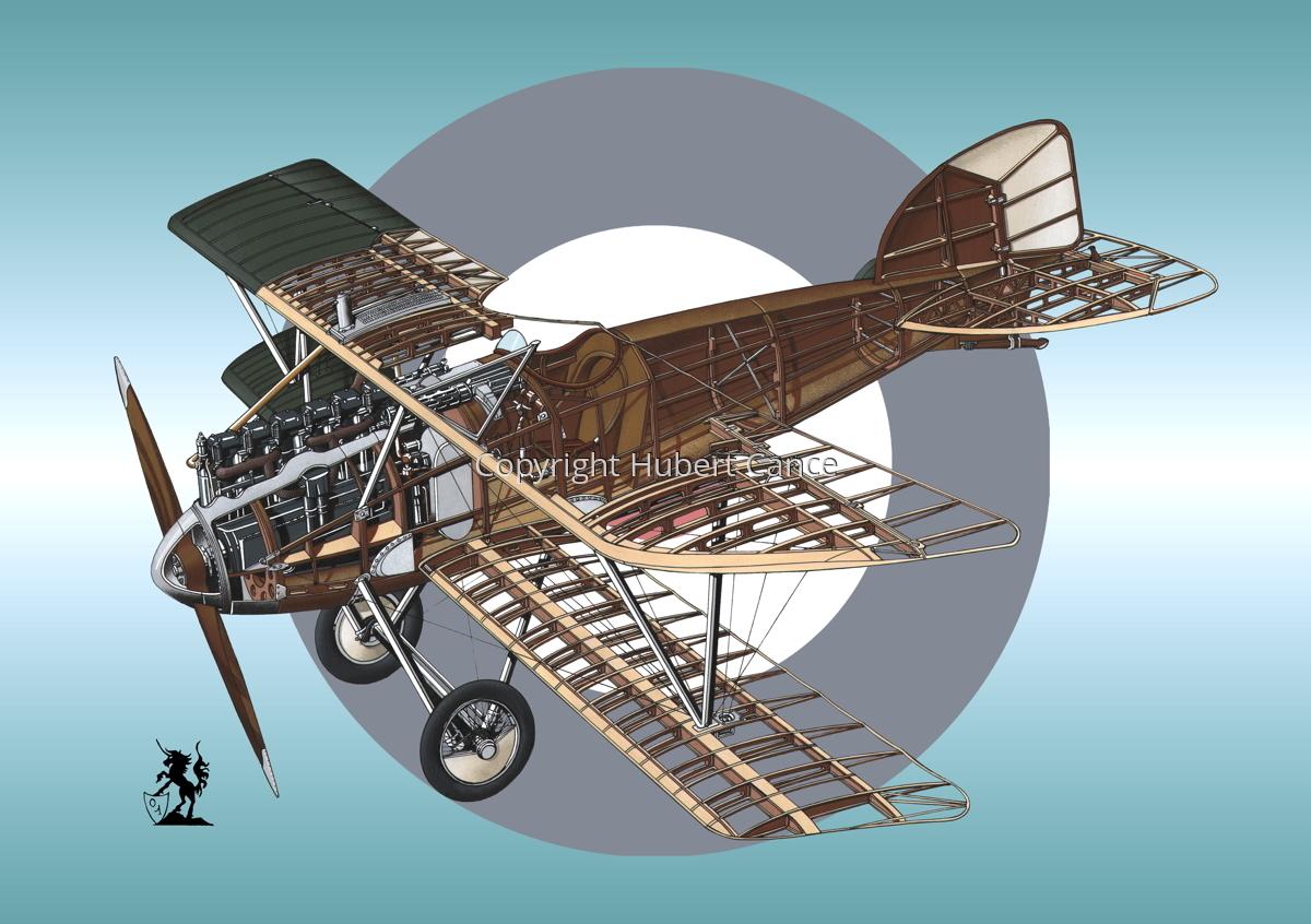 Albatros D.III (Roundel #7) (large view)