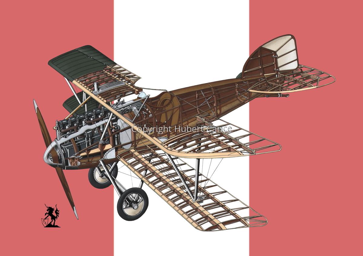Albatros D.III (Roundel #8) (large view)