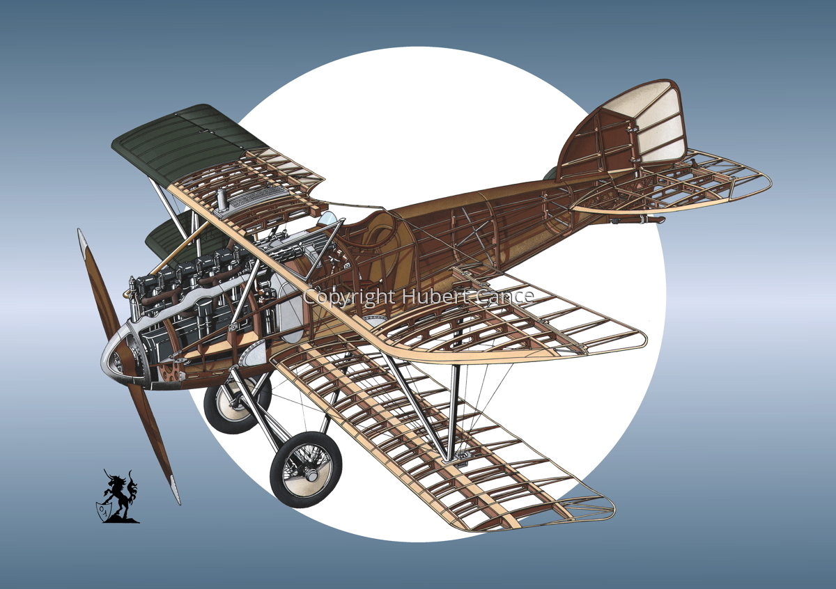 Albatros D.III (Roundel #9) (large view)