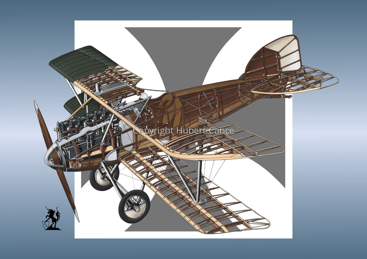 Albatros D.III (Roundel #10) (large view)