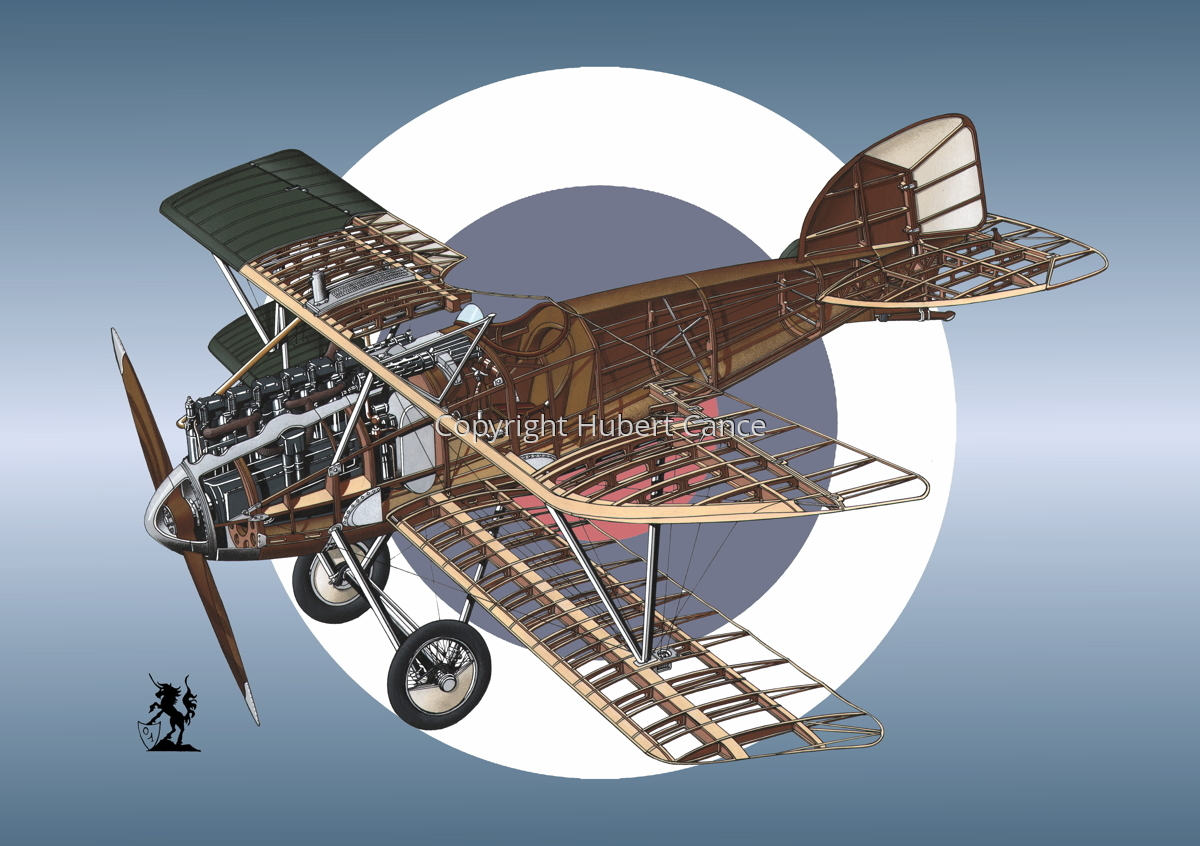 Albatros D.III (Roundel #11) (large view)