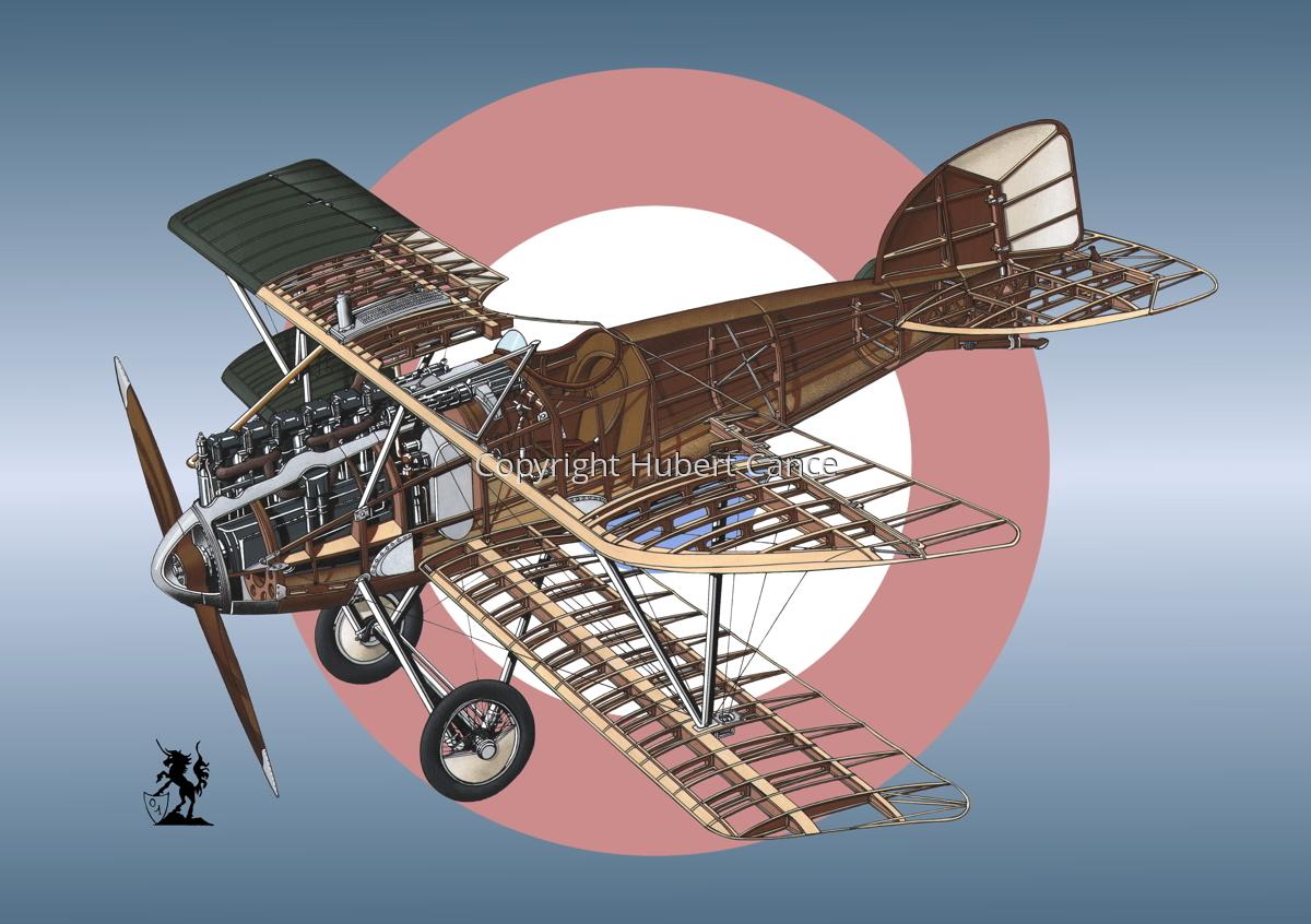 Albatros D.III (Roundel #12) (large view)
