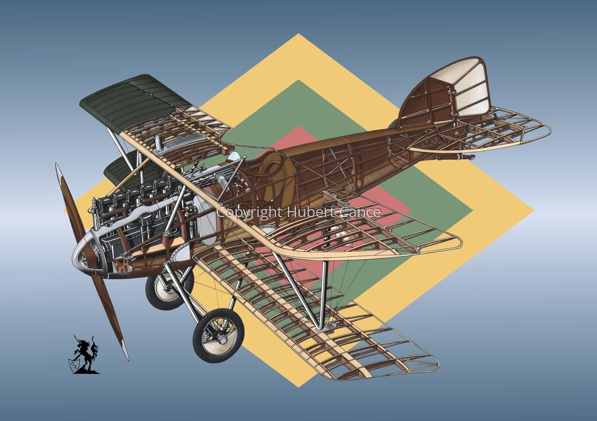 Albatros D.III (Roundel #14) (large view)