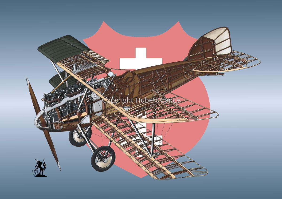 Albatros D.III (Roundel #13) (large view)