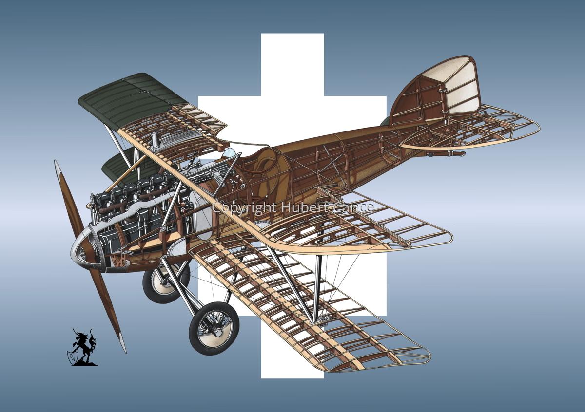 Albatros D.III (Roundel #17) (large view)