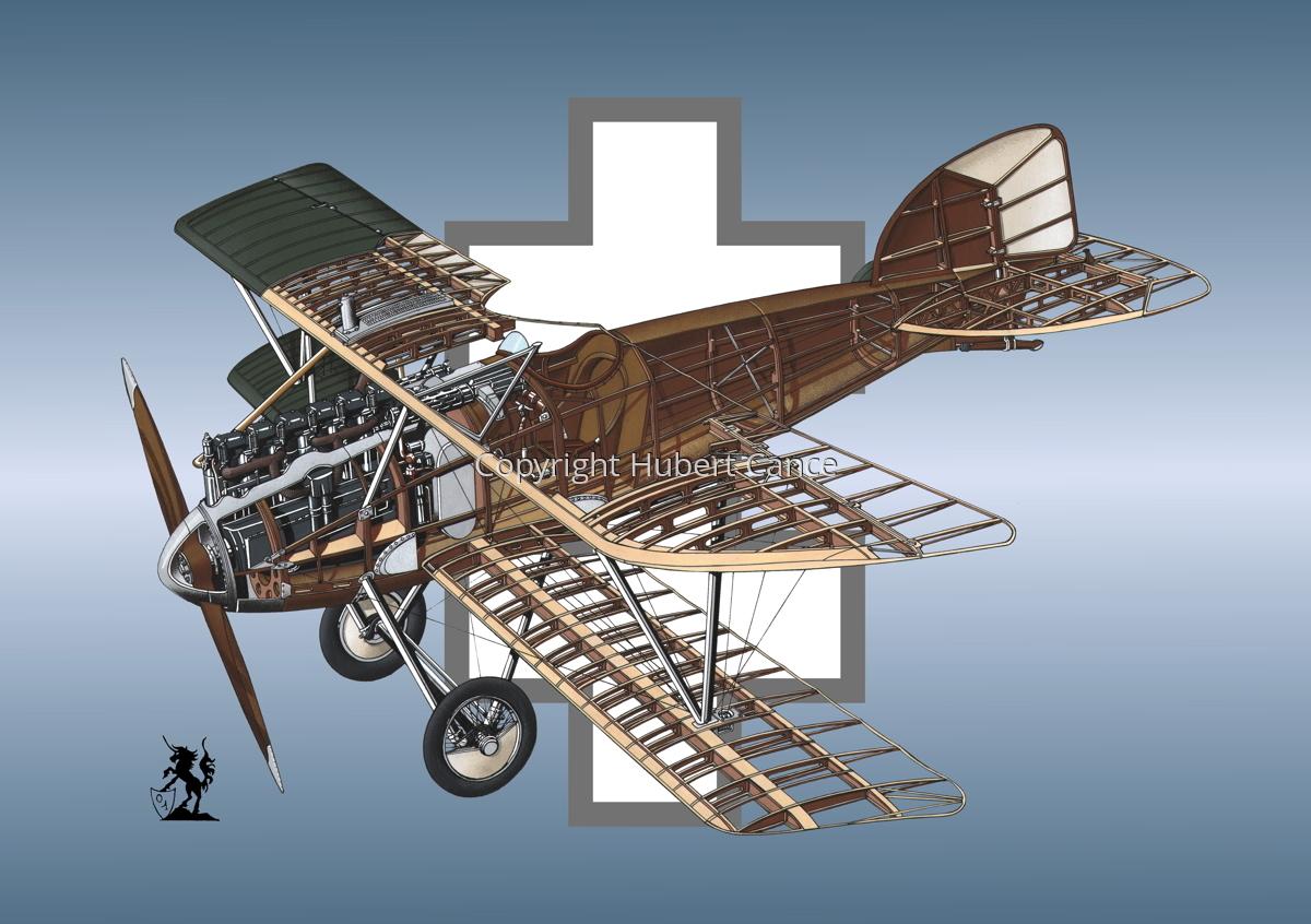Albatros D.III (Roundel #16) (large view)