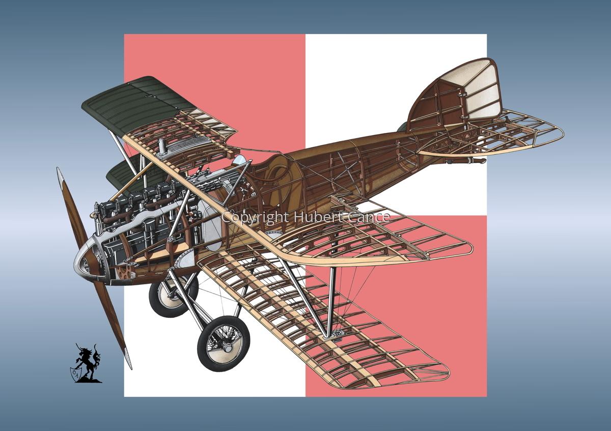 Albatros D.III (Roundel #18) (large view)