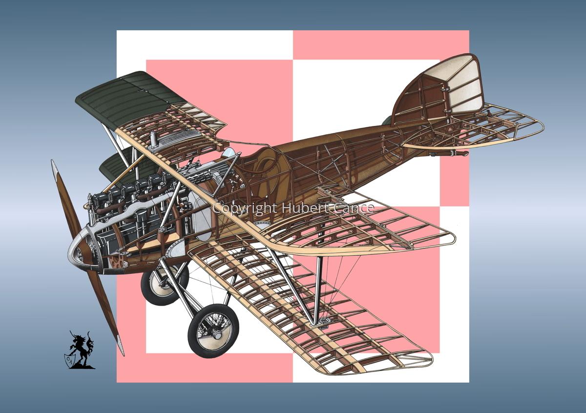 Albatros D.III (Roundel #19) (large view)