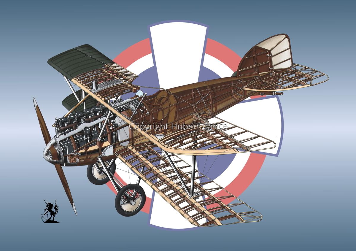Albatros D.III (Roundel #21) (large view)