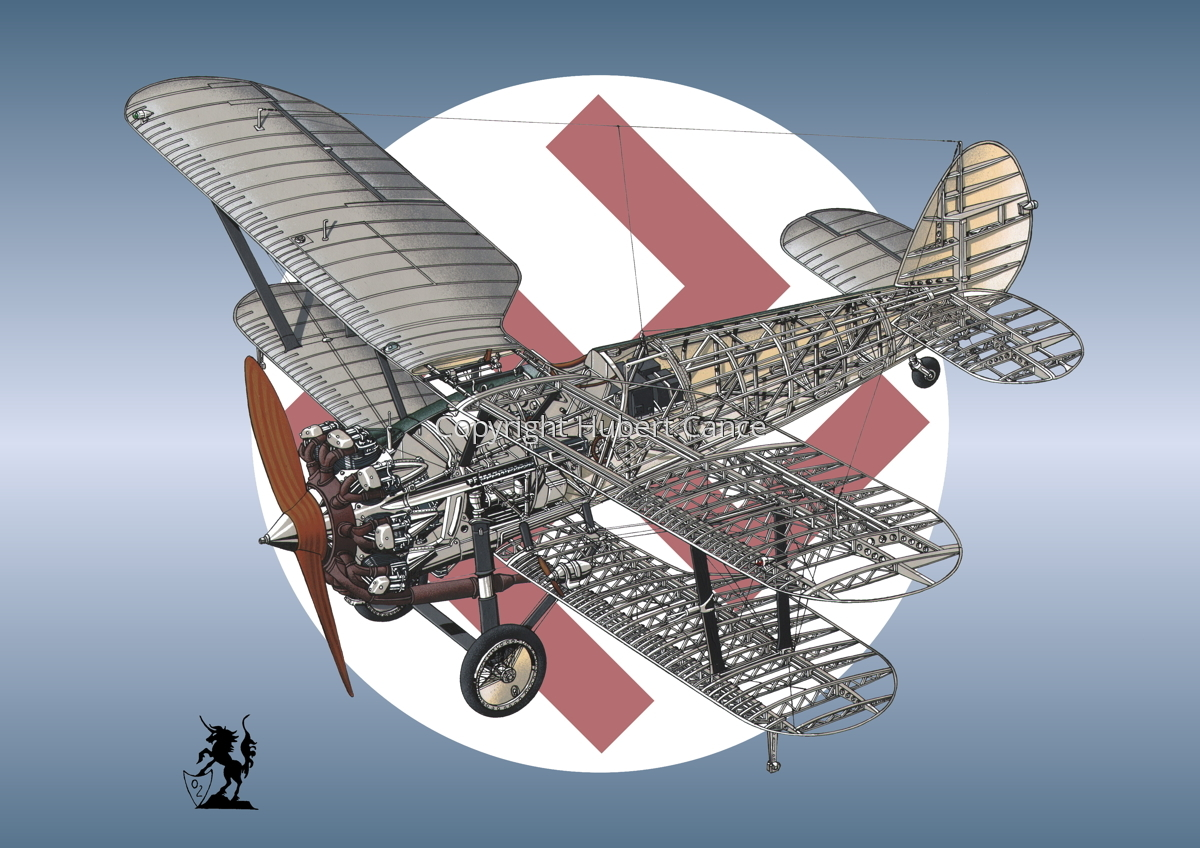 "Bristol Model 105 ""Bulldog"" Mk.IIa (Roundel #4) (large view)"