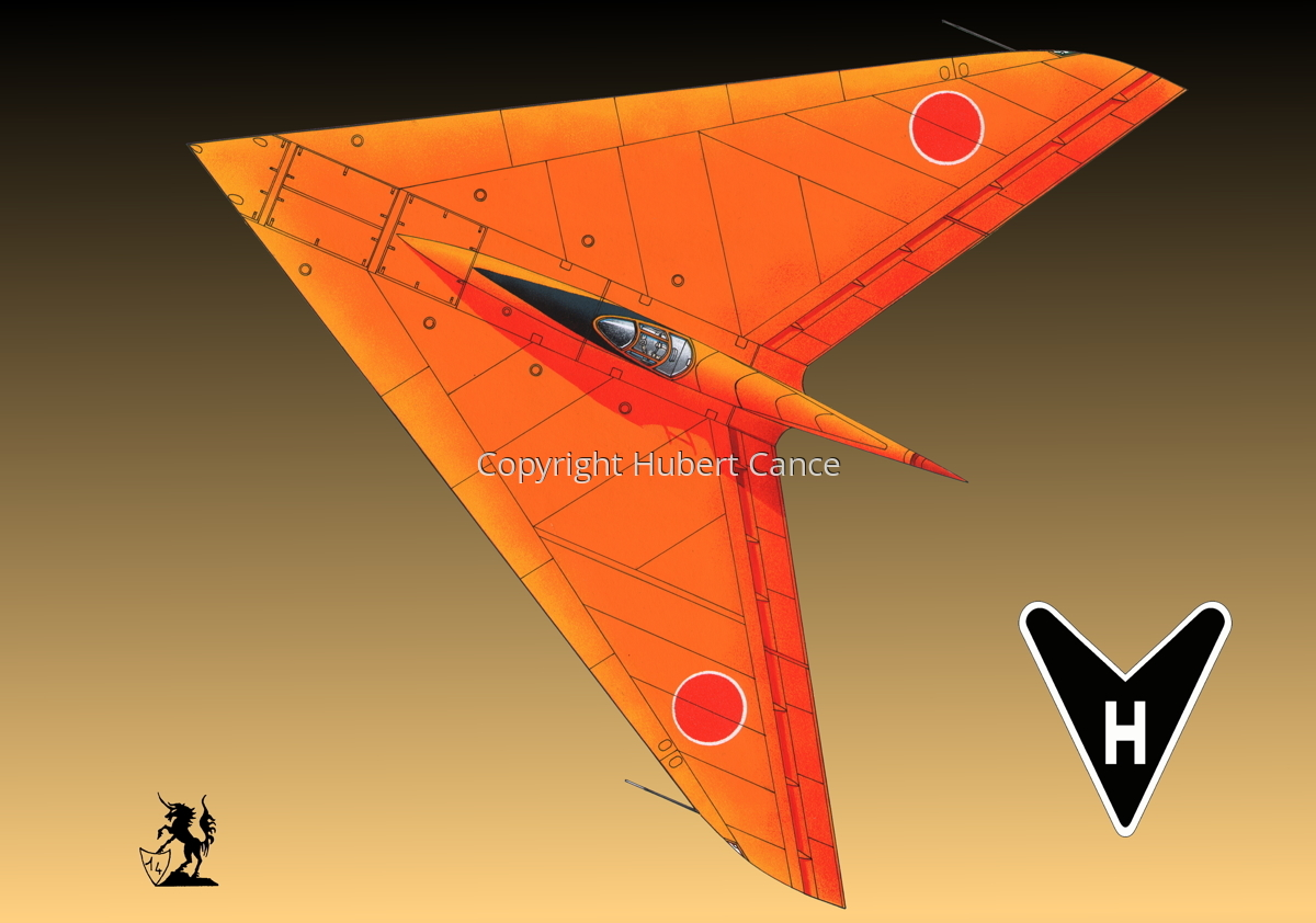 Horten Ho XIIIb Japanese Trainer Upper View(Logo #1.3) (large view)