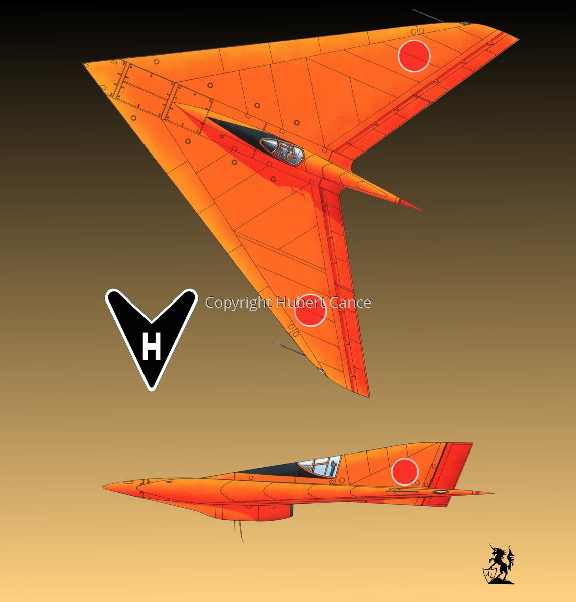 Horten Ho XIIIb Japanese Trainer 2-Views (Logo #1.3) (large view)