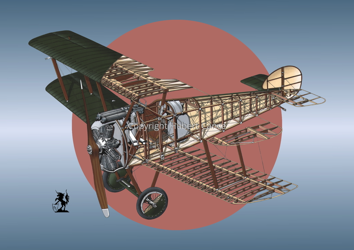 """Sopwith """"Camel"""" F1 (Roundel #11) (large view)"""
