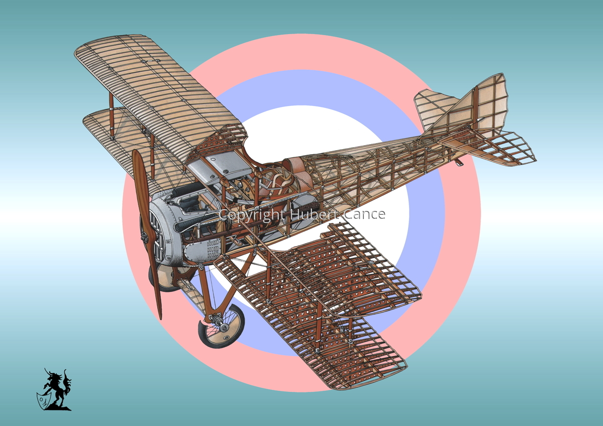 SPAD VII (Roundel #7) (large view)