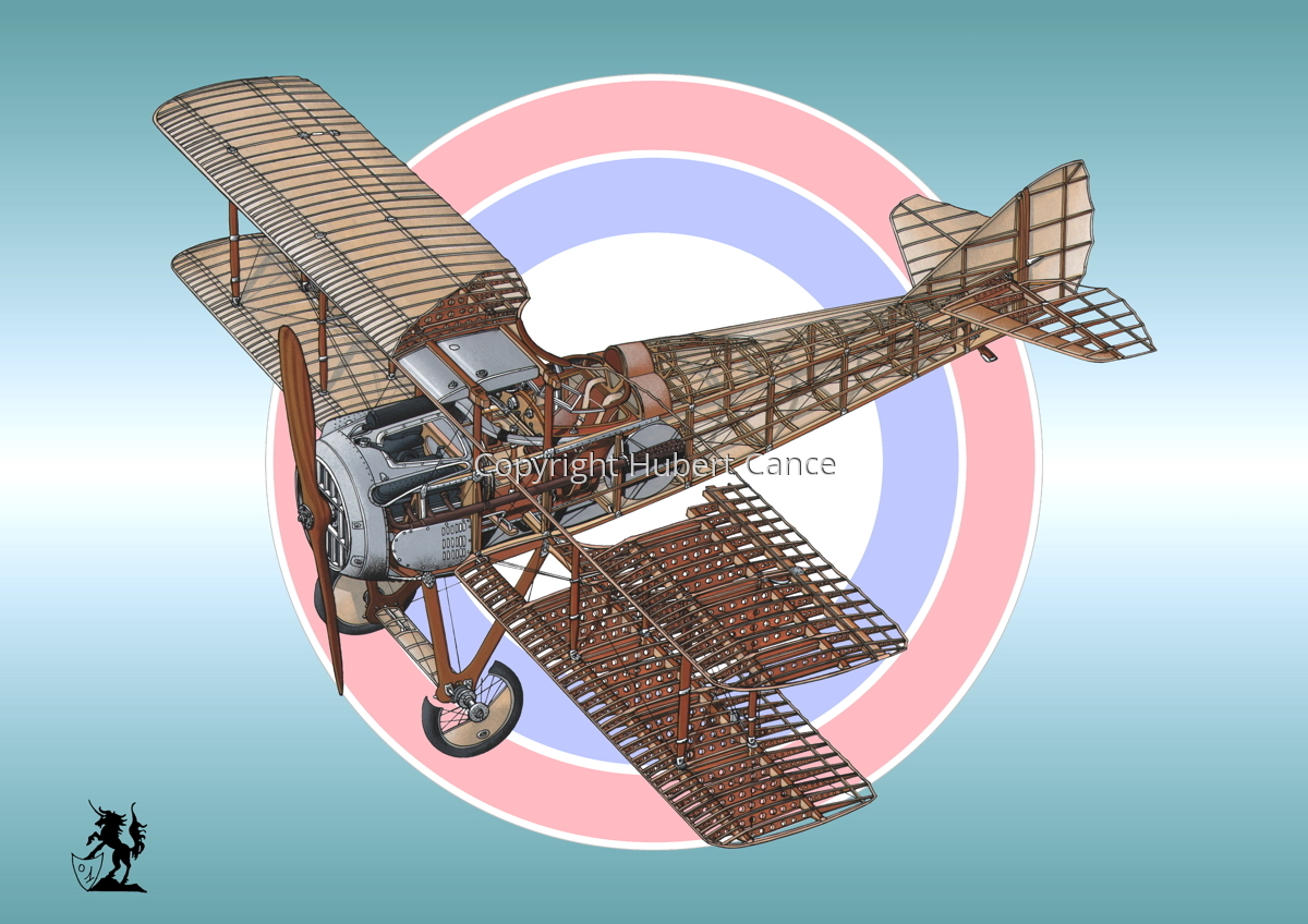 SPAD VII (Roundel #8) (large view)