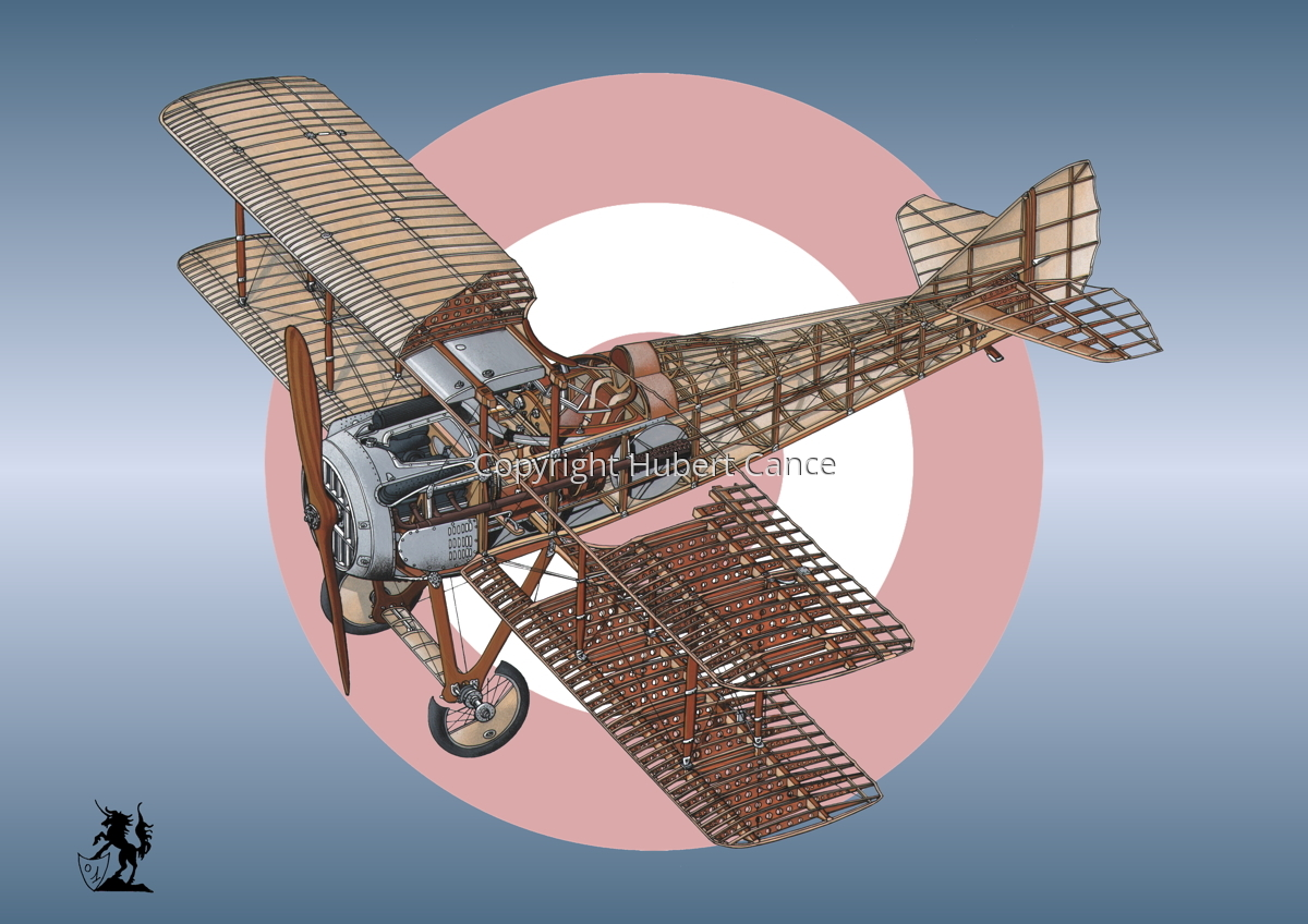 SPAD VII (Roundel #42) (large view)
