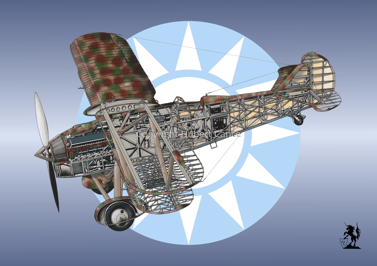 Fiat CR.32 (Roundel #9) (large view)